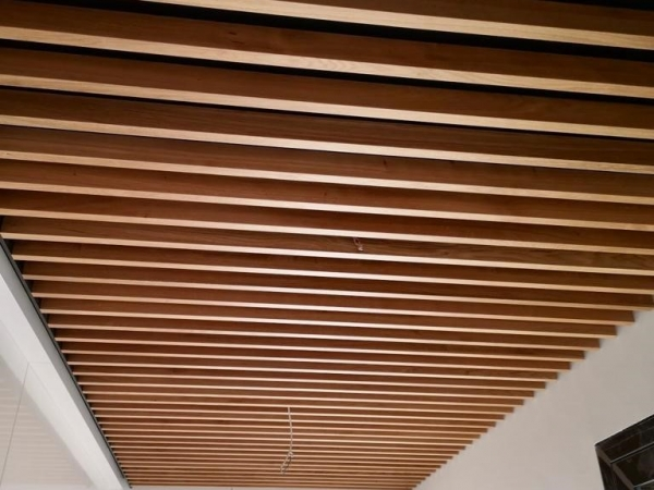 007_plafond.jpg